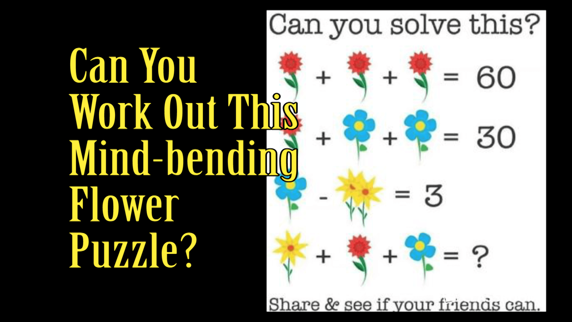 K 6 Math In The News Facebook Flower Puzzle
